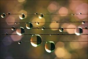 gocce musicali